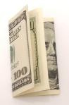 Found $100 Bill